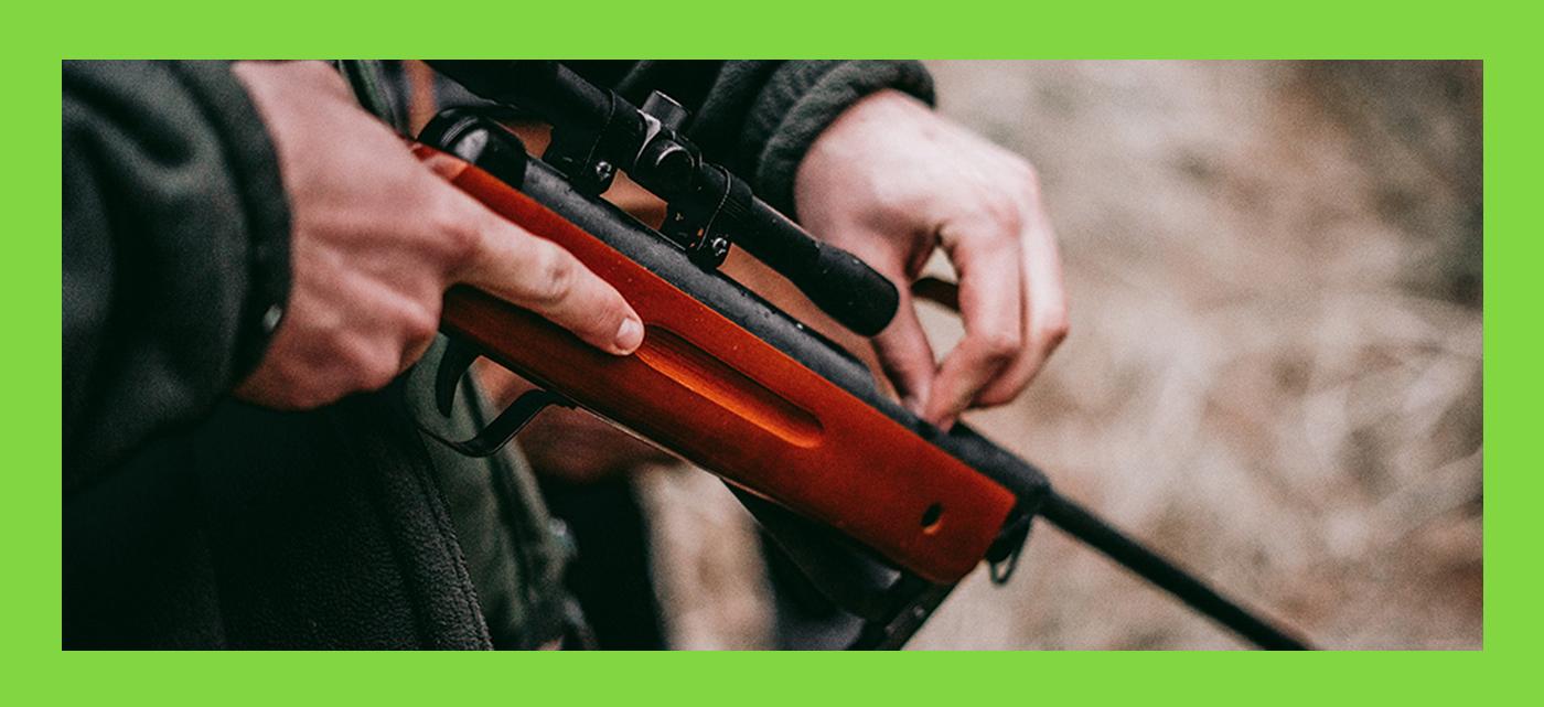 Permalink to:Jagttegnsundervisning